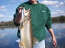 2009 Fish Tales